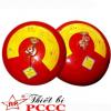 Bình chữa cháy tự động bằng bột BC 6kg XFZTB6