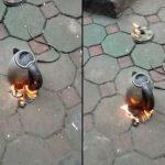 Phát hoảng khi cháy ấm siêu tốc dù không đun nước